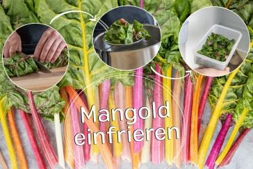 Mangold einfrieren