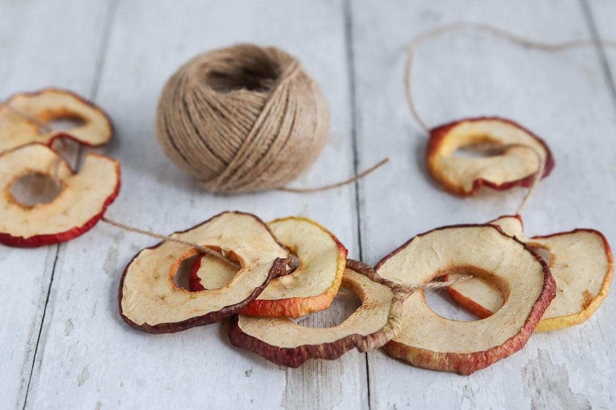 Apfelringe lufttrocknen