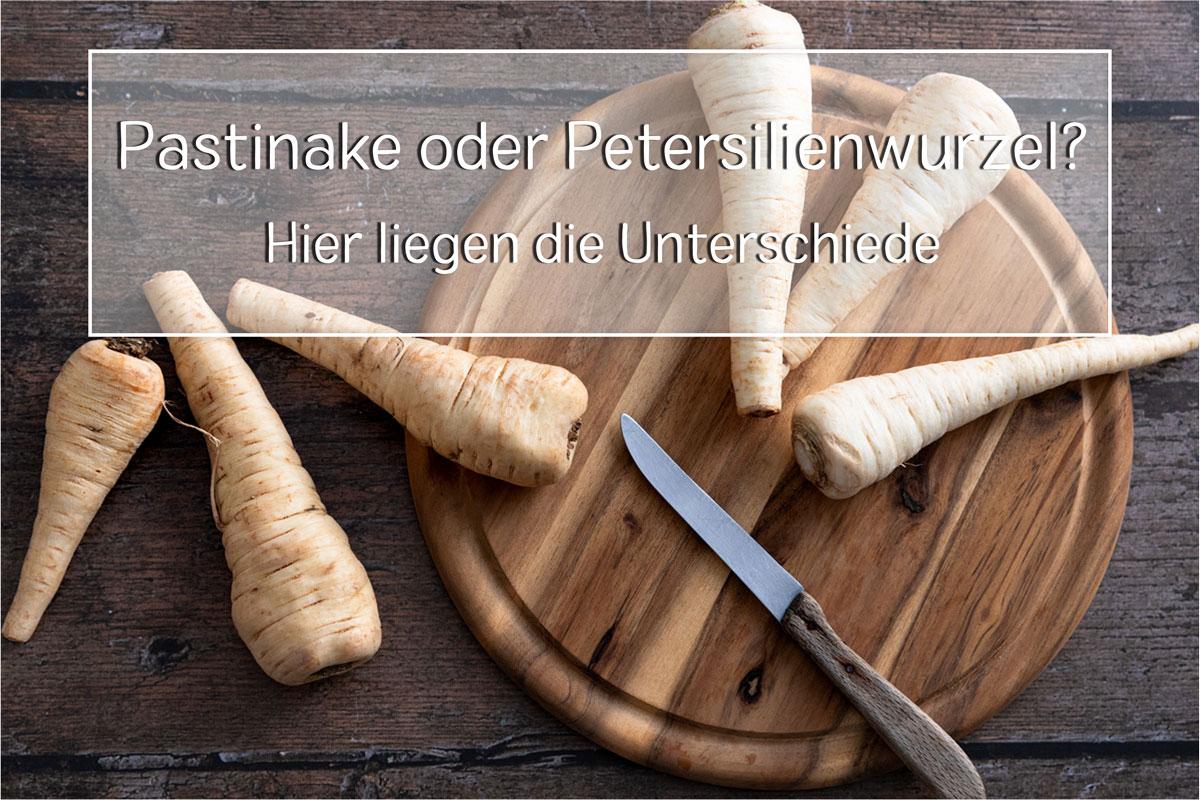 Pastinake oder Petersilienwurzel