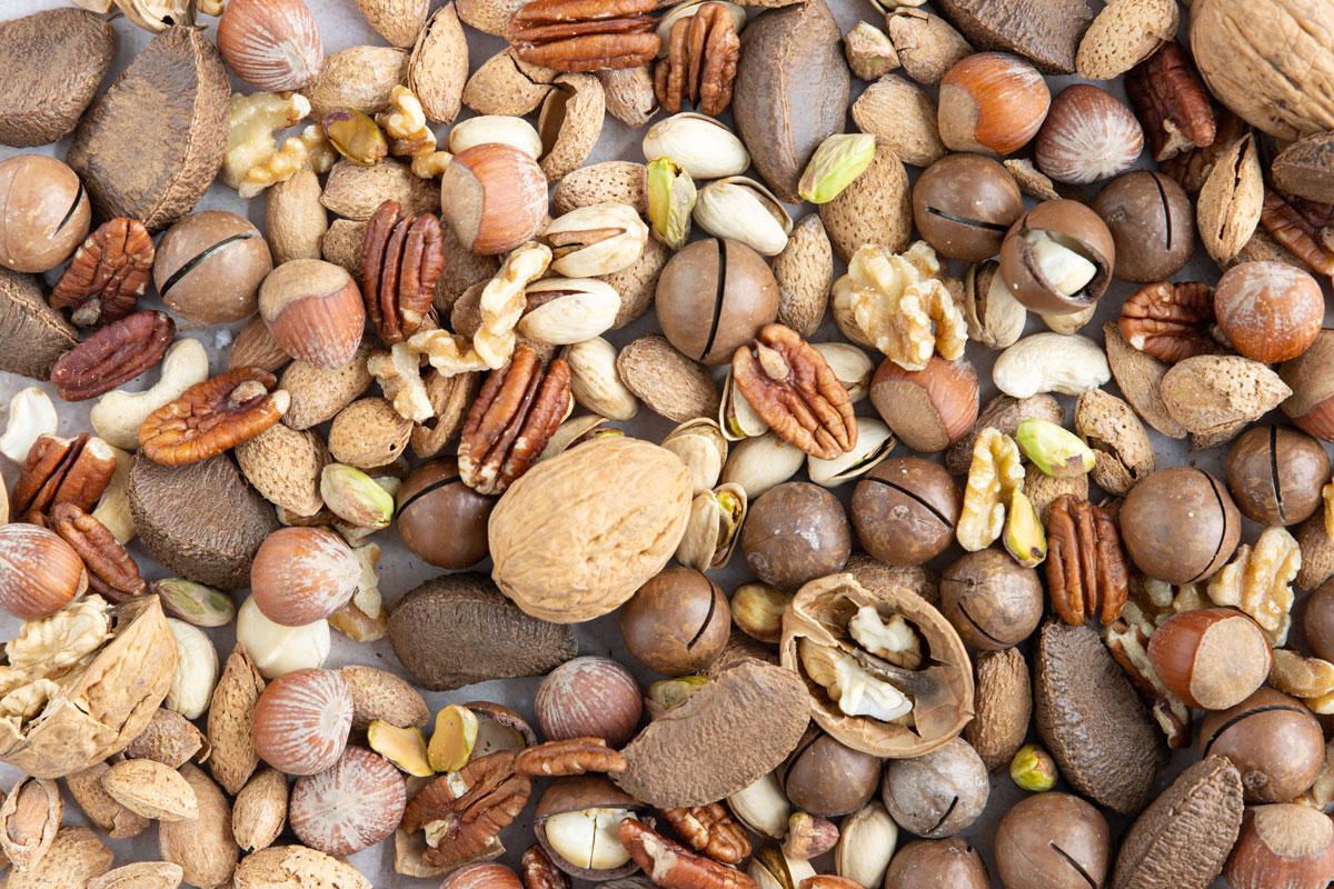 Nüsse sind Paleo tauglich