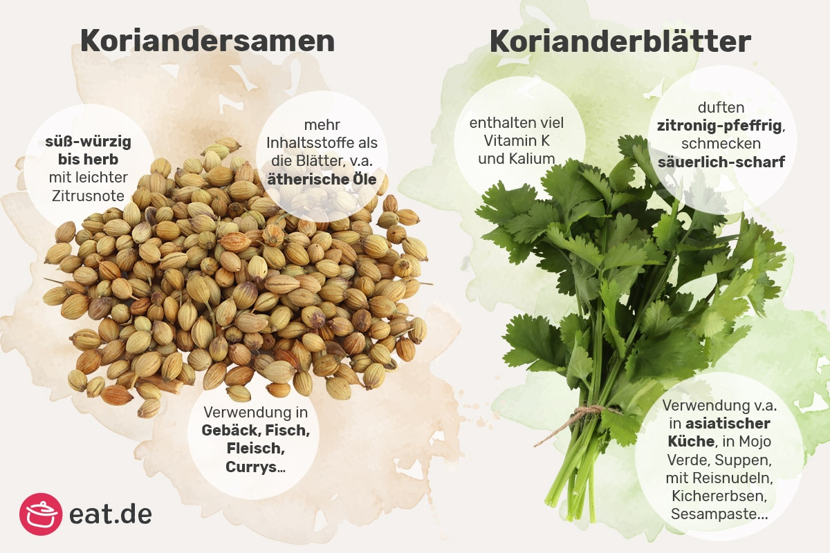 Unterschiede Koriandersamen und Korianderblätter