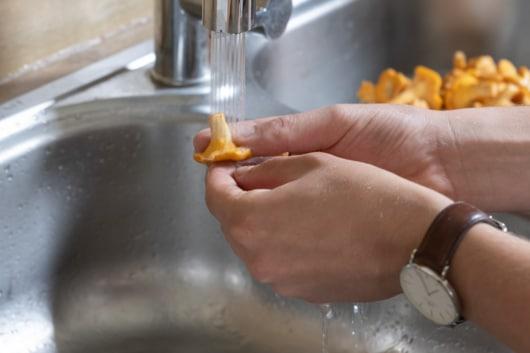 Pfifferlinge waschen